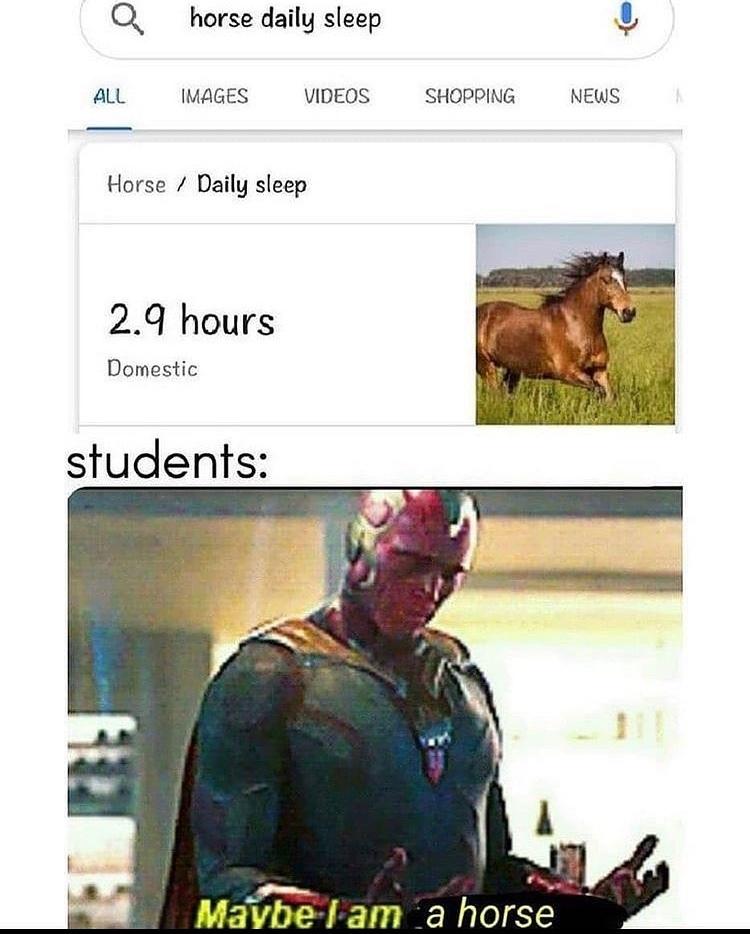 horse man - meme
