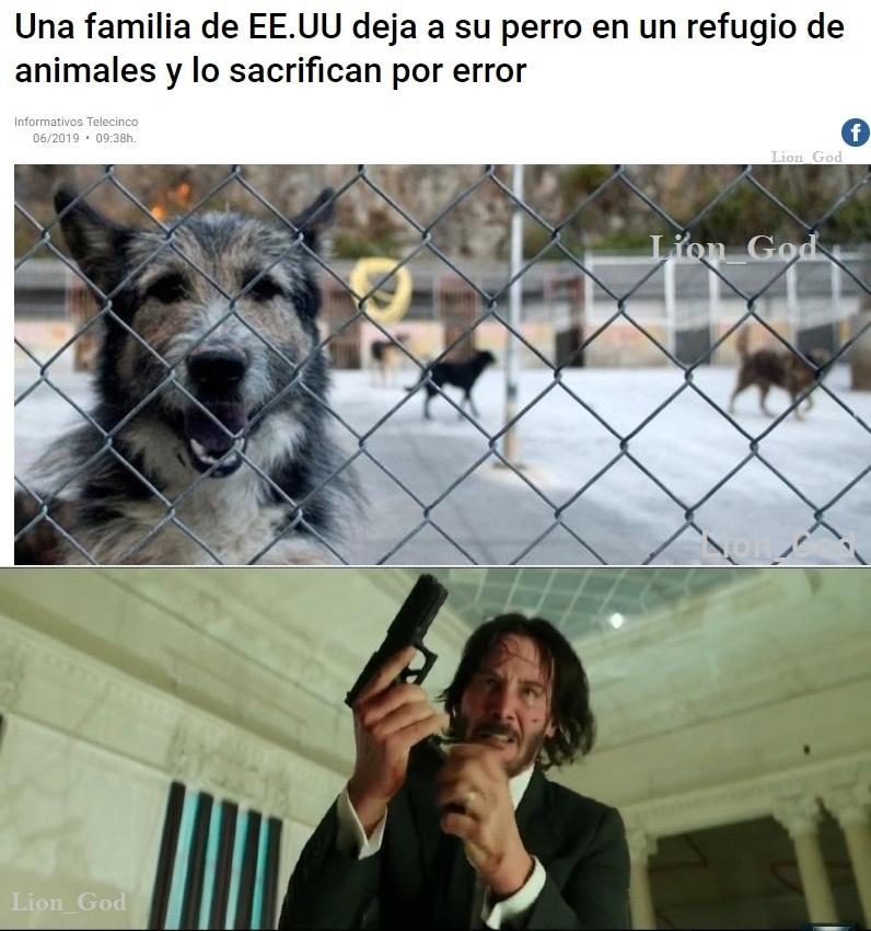Negligencia veterinaria - meme