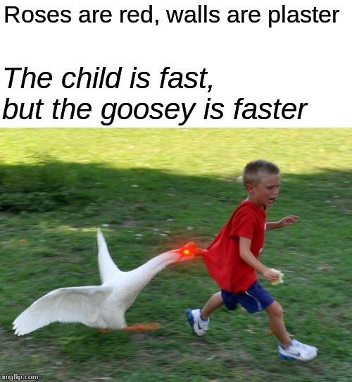 Not tooooo fast - meme