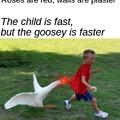 Not tooooo fast