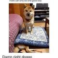 Savage doggo
