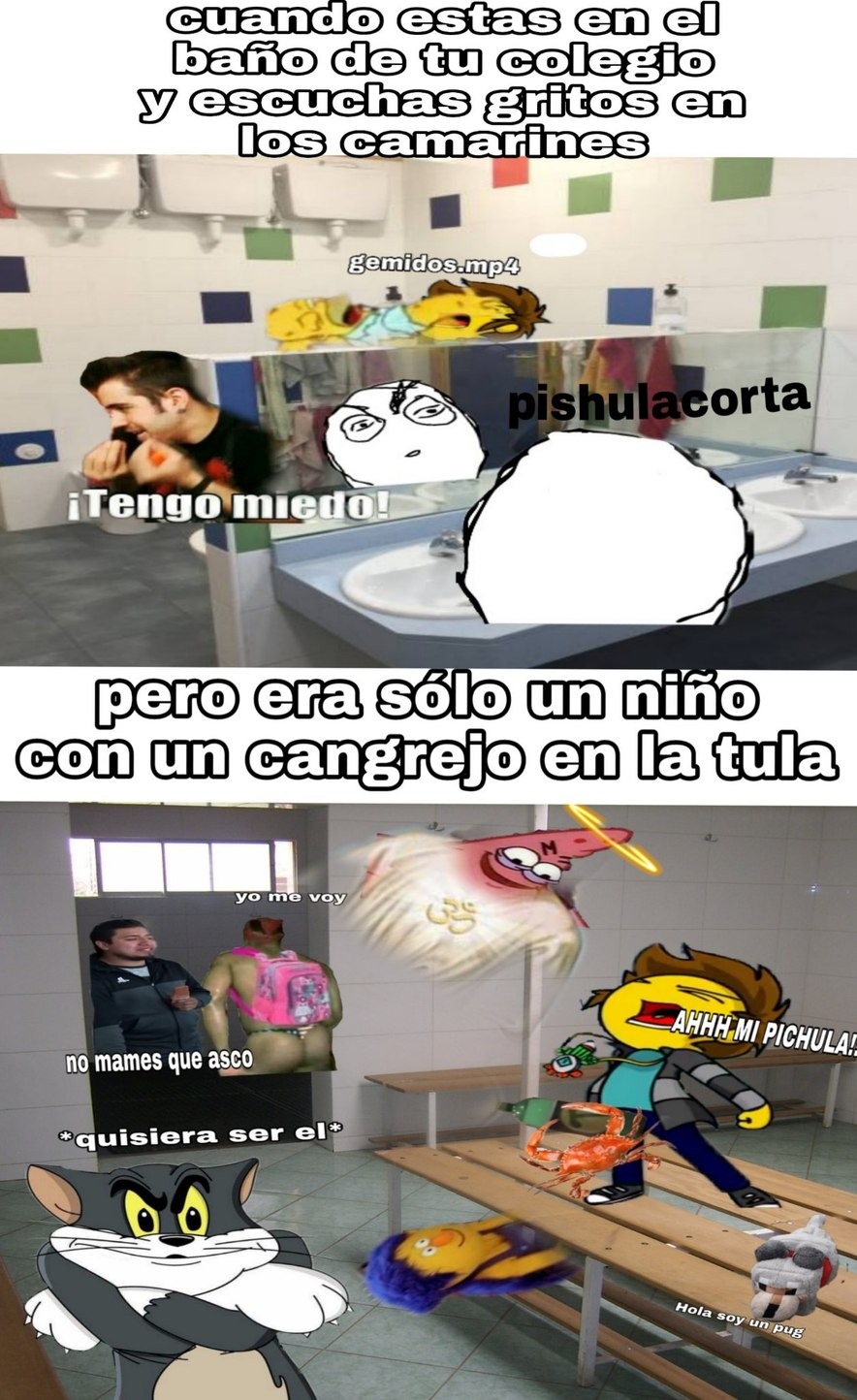 Cangrejo pro - meme