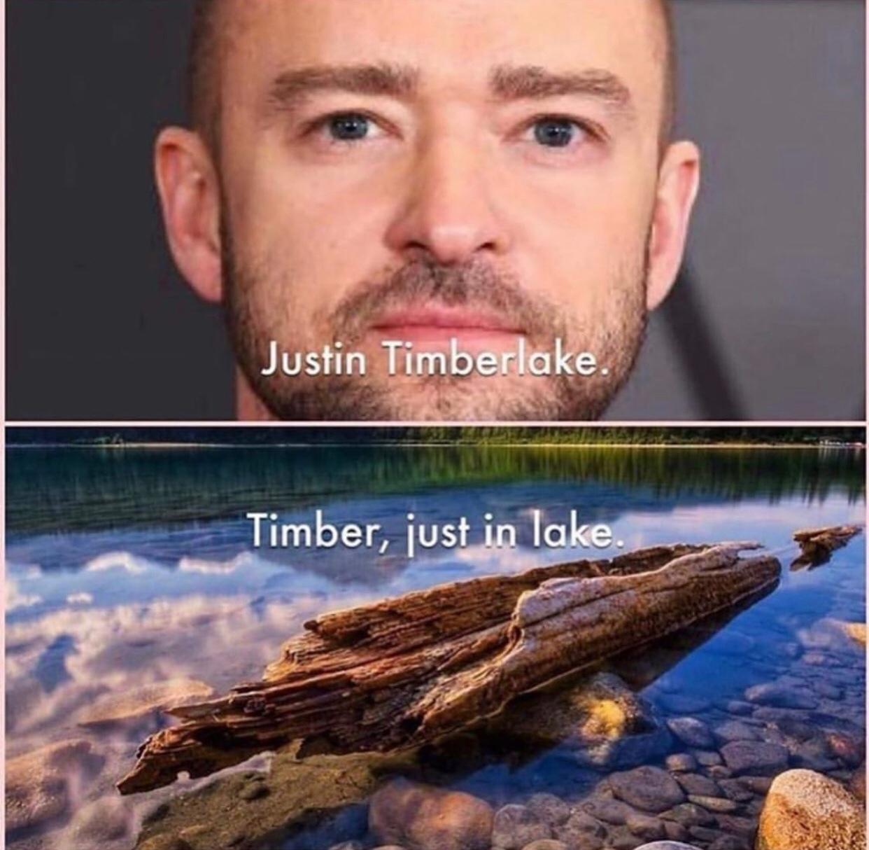 TIMBER - meme