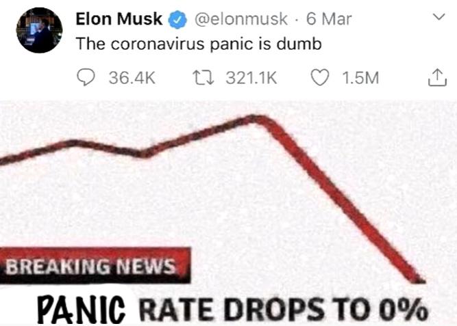 Elon musk - meme