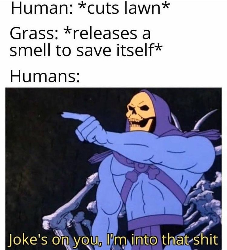 cut grass smell - meme
