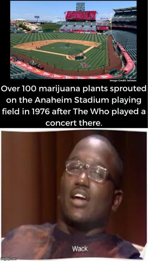 U got any more of those concerts - meme