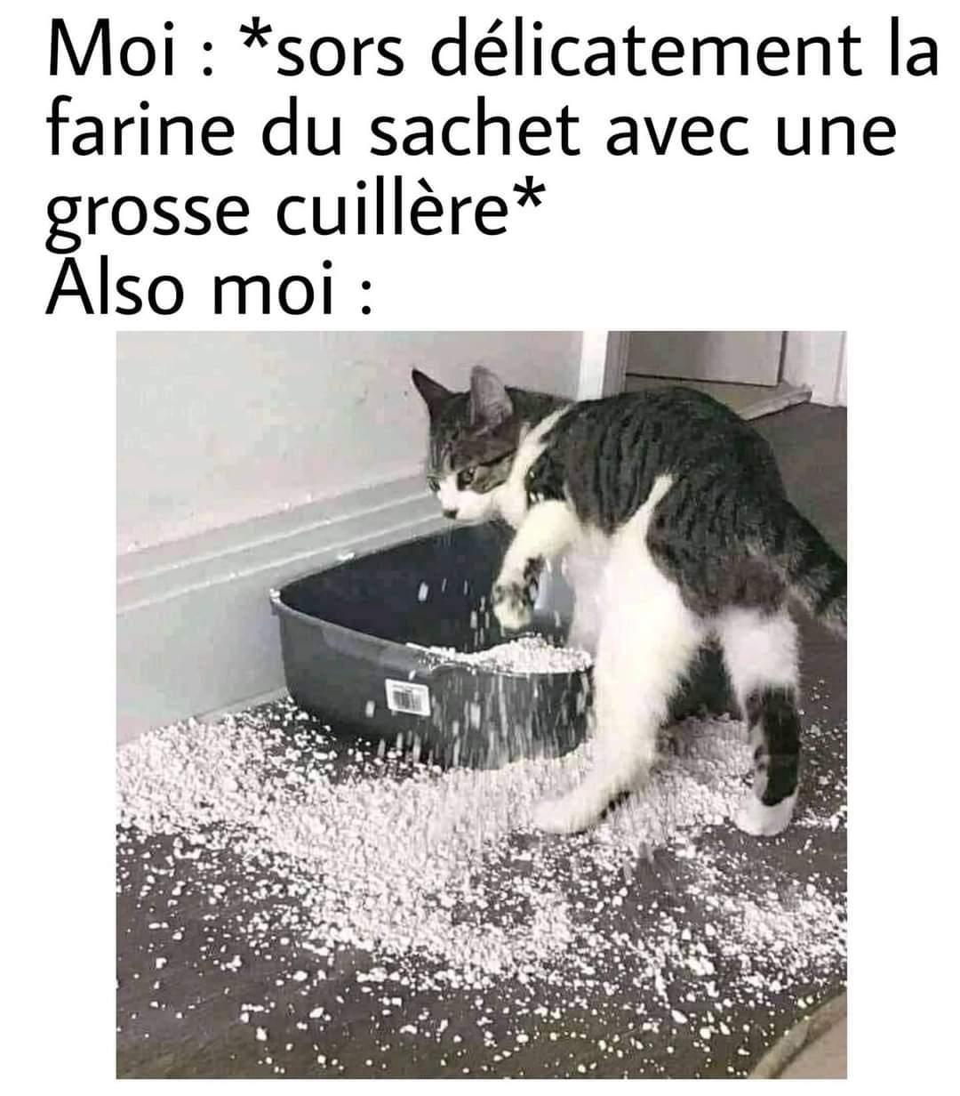 Ptn Félix t'abuses - meme