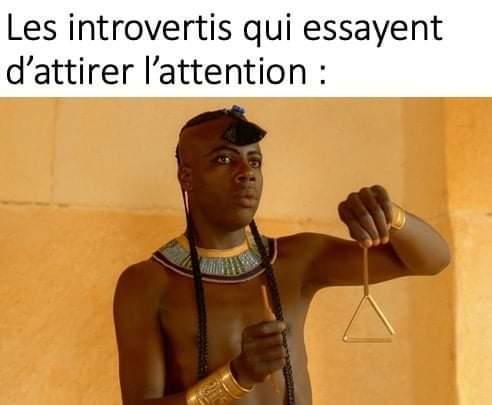 On accepte même les introvertis sur le discord ! - meme