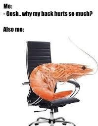 true lmao - meme