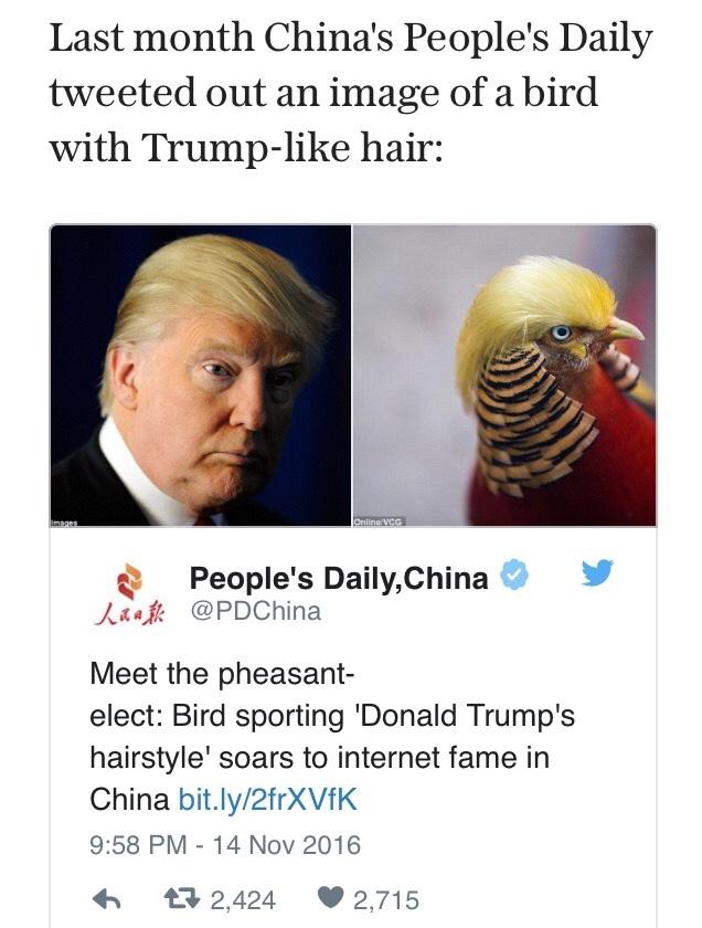 the pheasant elect Donald Trumper - meme