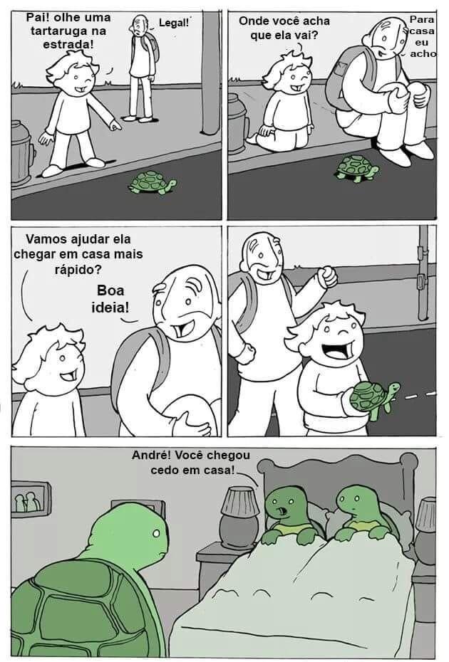 pô tartaruguinha  - meme