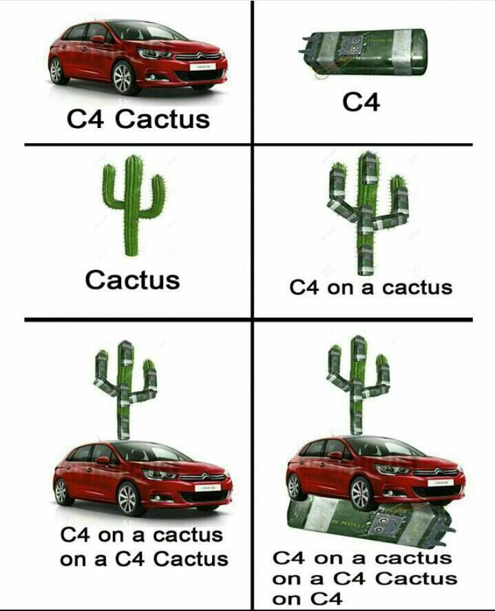 Muchos c4 y muchos cactus - meme