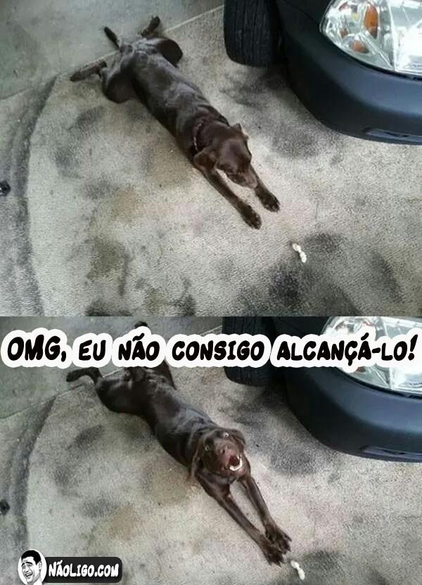 Cachorros #3 - meme