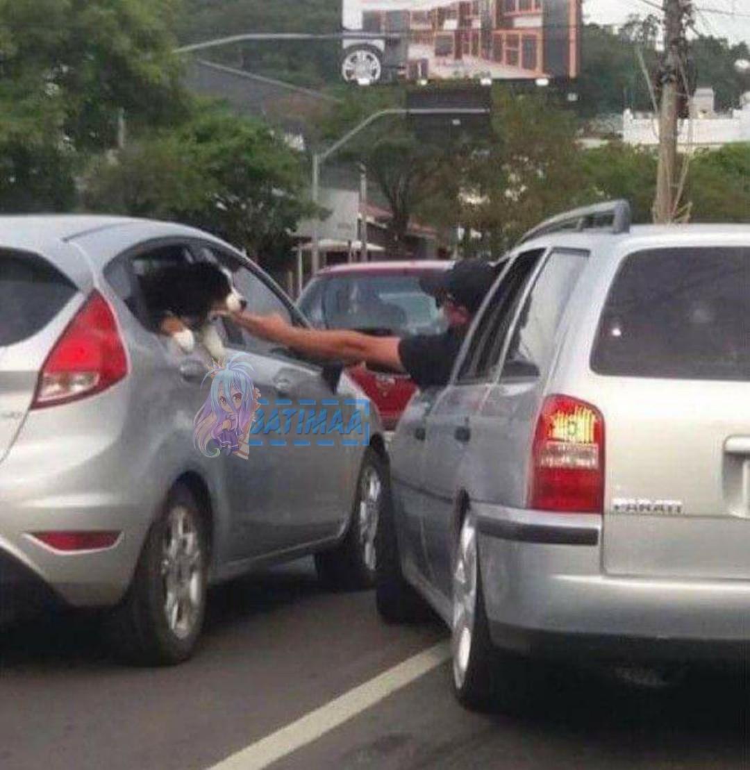 Acariciar o dogo no trânsito eh a melhor opção para aliviar o estresse - meme