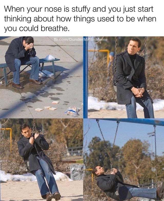 When your nose is stuffy and you start hinking about how things were when you could breath - meme