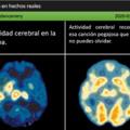 Tu cerebro y tu