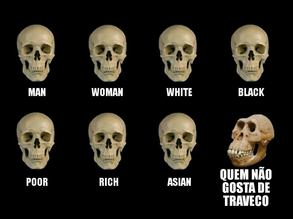 Quem gosta de traveco é uma pessoa de cultura - meme