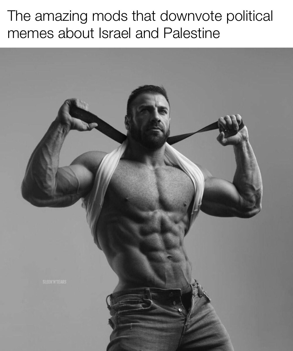Be like those amazing mods, downvote Palestine and Israel regardless of the meme's stance.