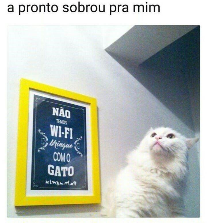 """""""Humano desprezível"""" - meme"""