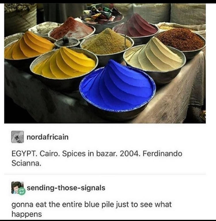 the spice - meme