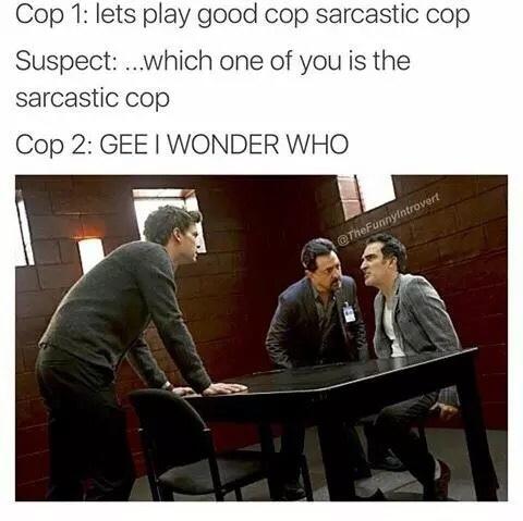 Can I be sarcastic cop? - meme