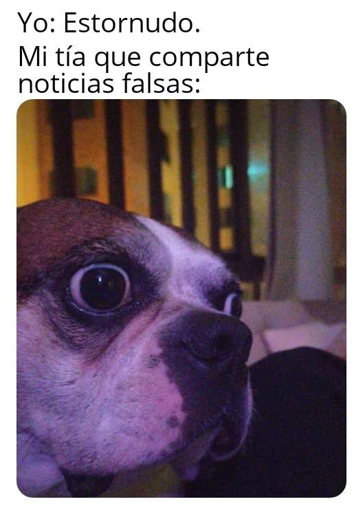 Pánico - meme
