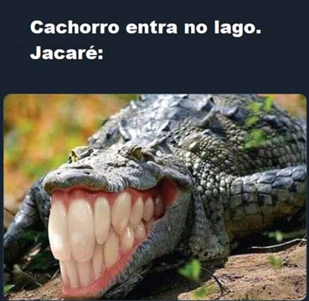 Dinossauro Rebaixadokkkkkkkkk - meme