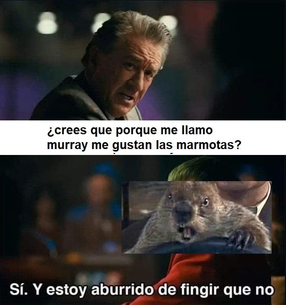 Murray marmota - meme
