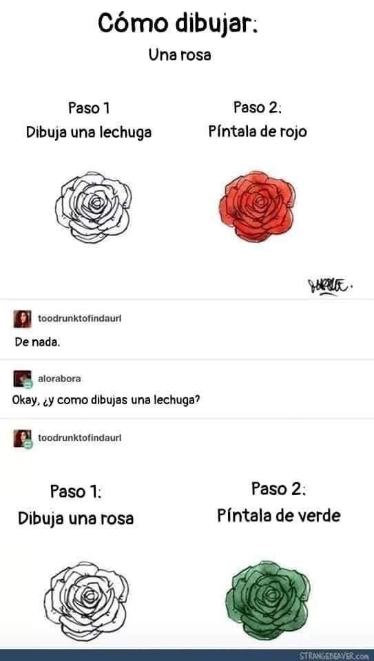 ROSA VS LECHUGA - meme