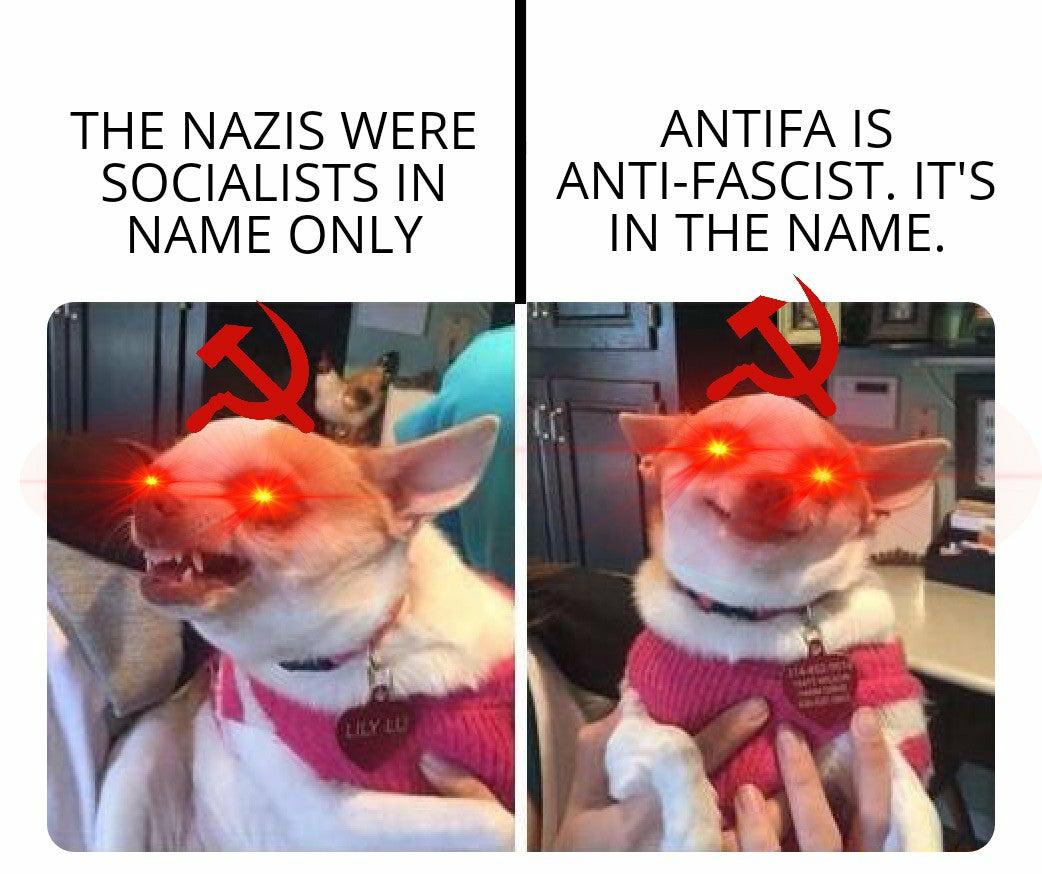 Anti-antifa - meme