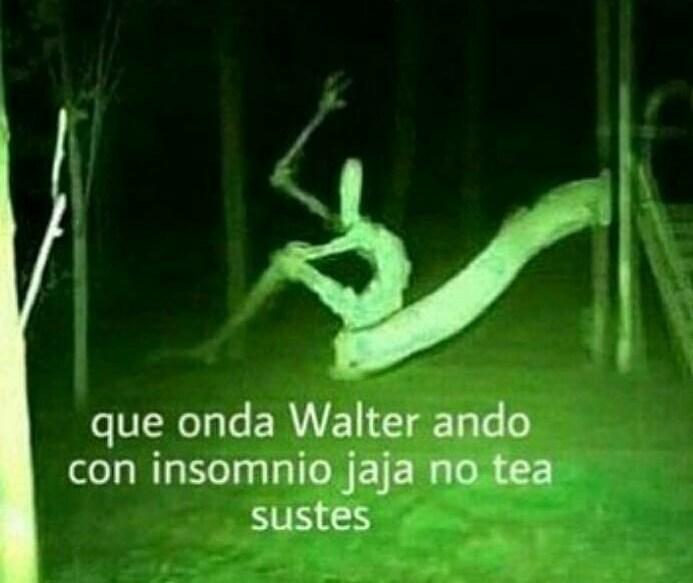 Wena Walter - meme