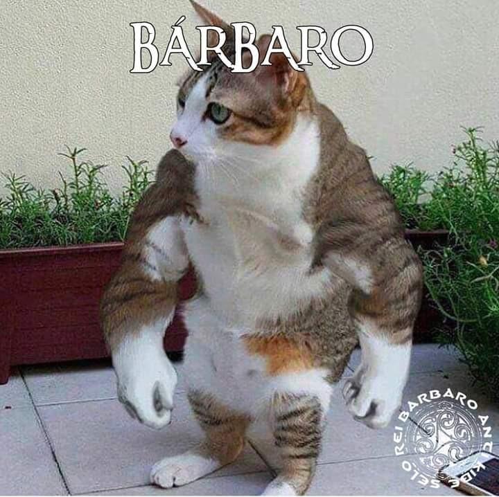 Atualização pro Bárbaro felino. (Não vai passar mas tá ae mesmo assim) - meme