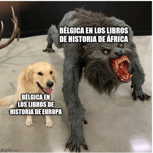 Belgica - meme
