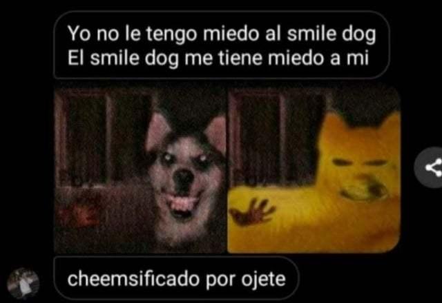 cheemsificó a smile dog :motherofgod: - meme
