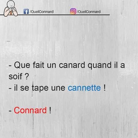 Cannard ! - meme