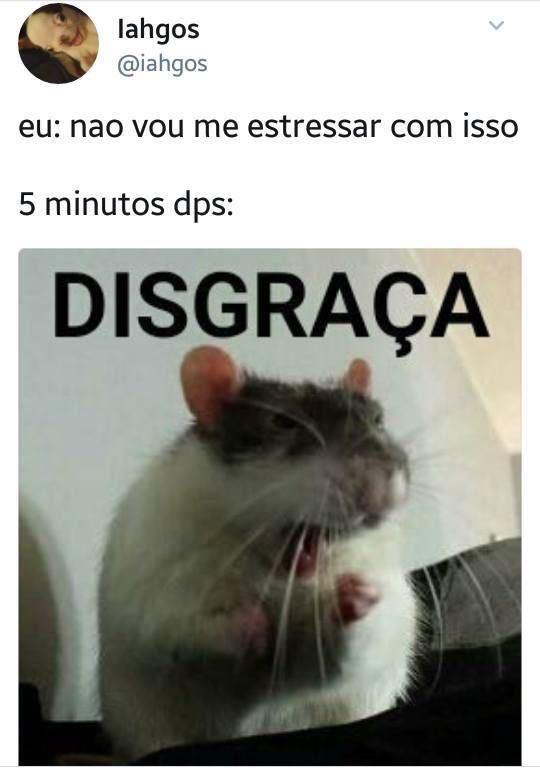 TOMA NO CU SAPOHA - meme