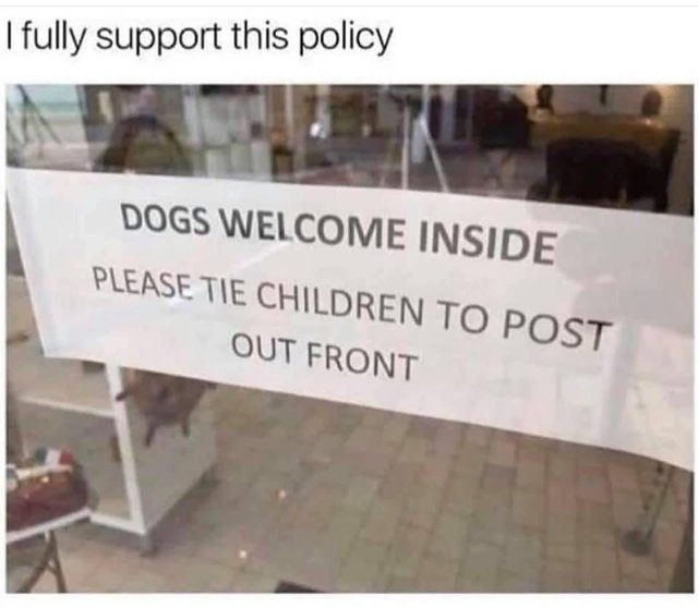 I fully support this policy - meme