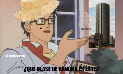 UN_CAMPESINO *MI SERVER DISCORD ESTÁ EN MI PERFIL* - meme