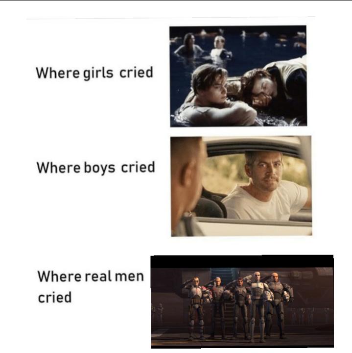 Where we all cried - meme