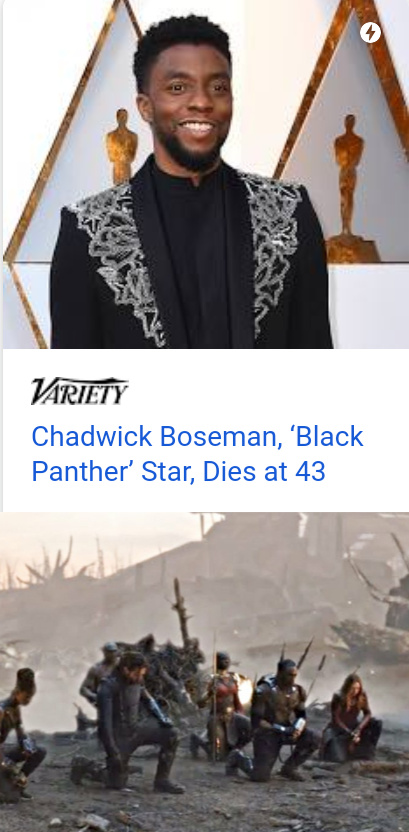 Today is a sad day.  Wakanda Forever. - meme