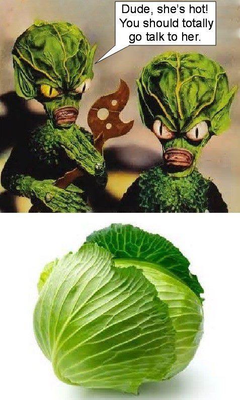 aliens Invasion of the Saucer Men - meme
