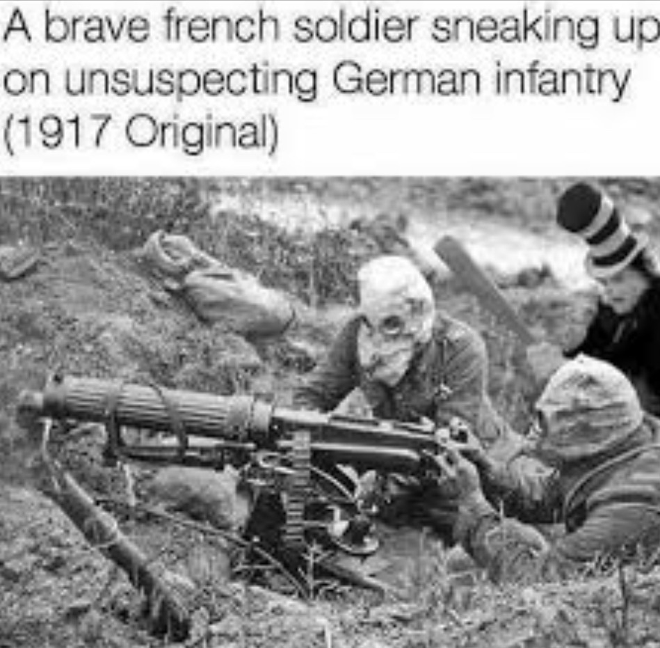 Cat kills French soldiers - meme
