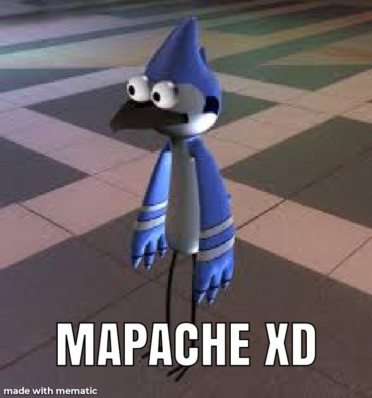 Mapache XD - meme