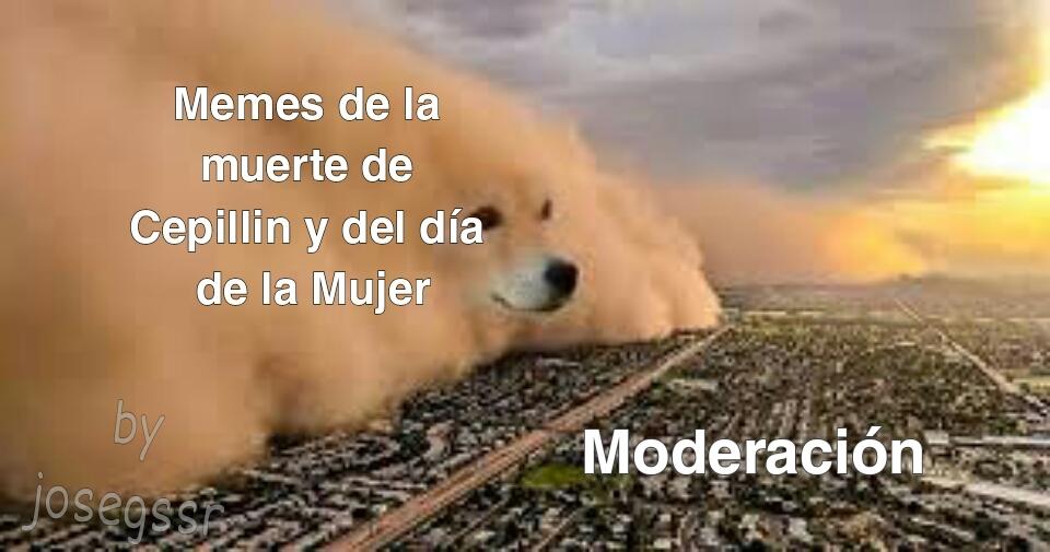 Hoy en moderación XD - meme