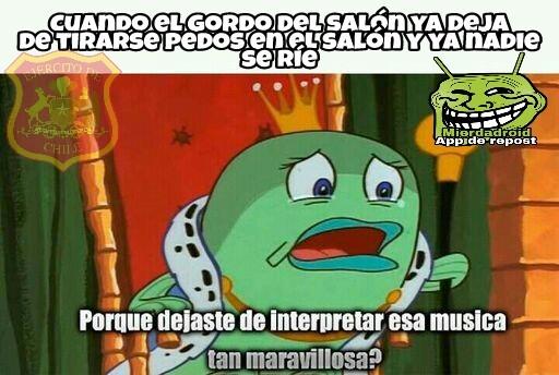 Chancho qlo. - meme