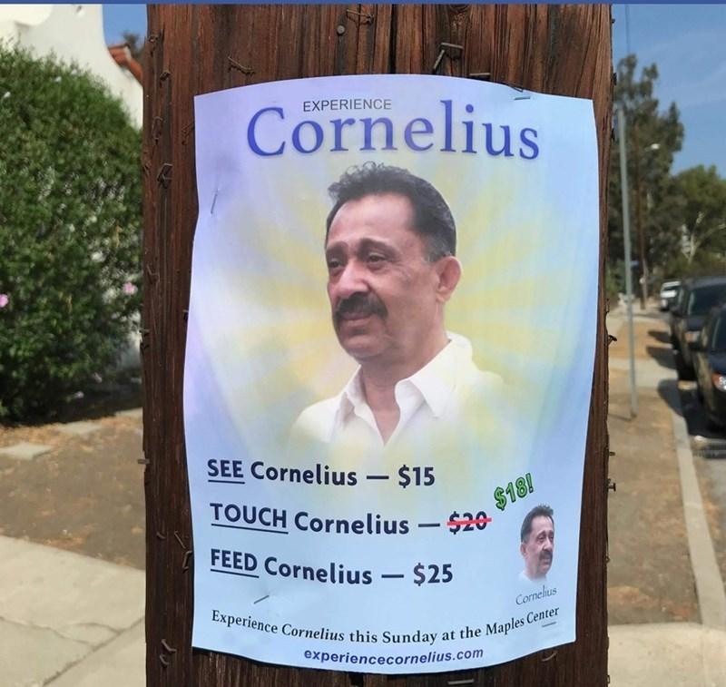 cornelius - meme