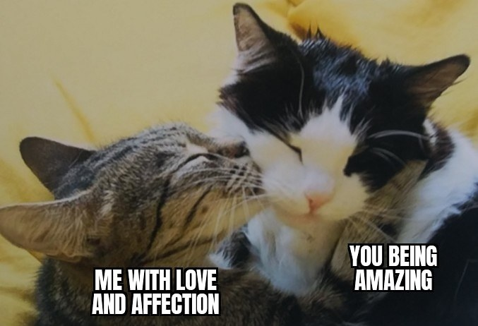 Wholesome OC kitty meme