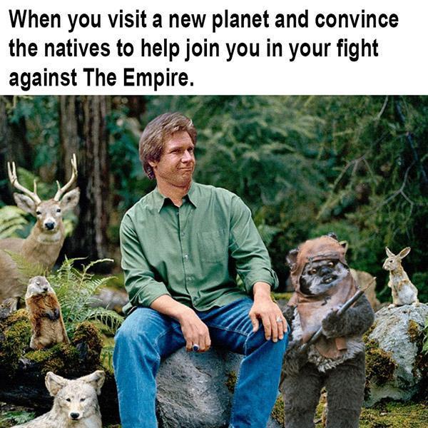To MDVigilante - meme
