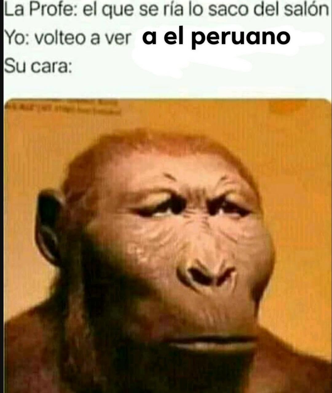 XDDDDDDDDDDDDDDDD - meme