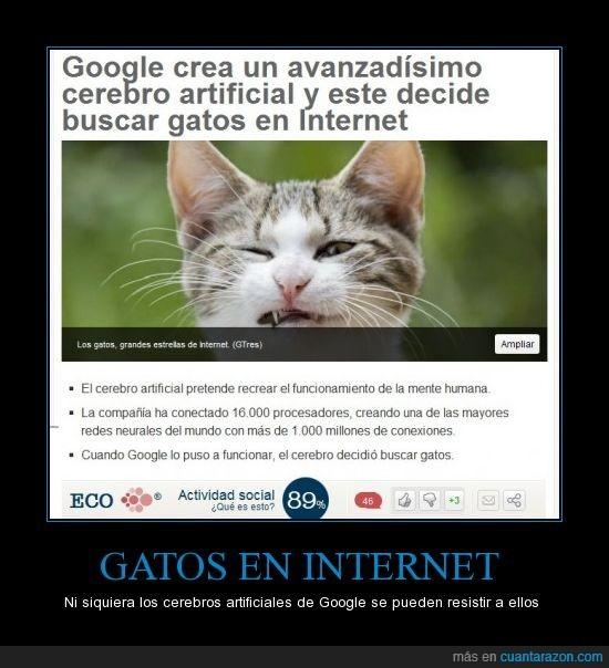 Googlee sabeeeee - meme